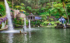 Tropische Pflanzen begegnen Ihnen in Madeiras botanischen Gärten (Quelle: iStock)