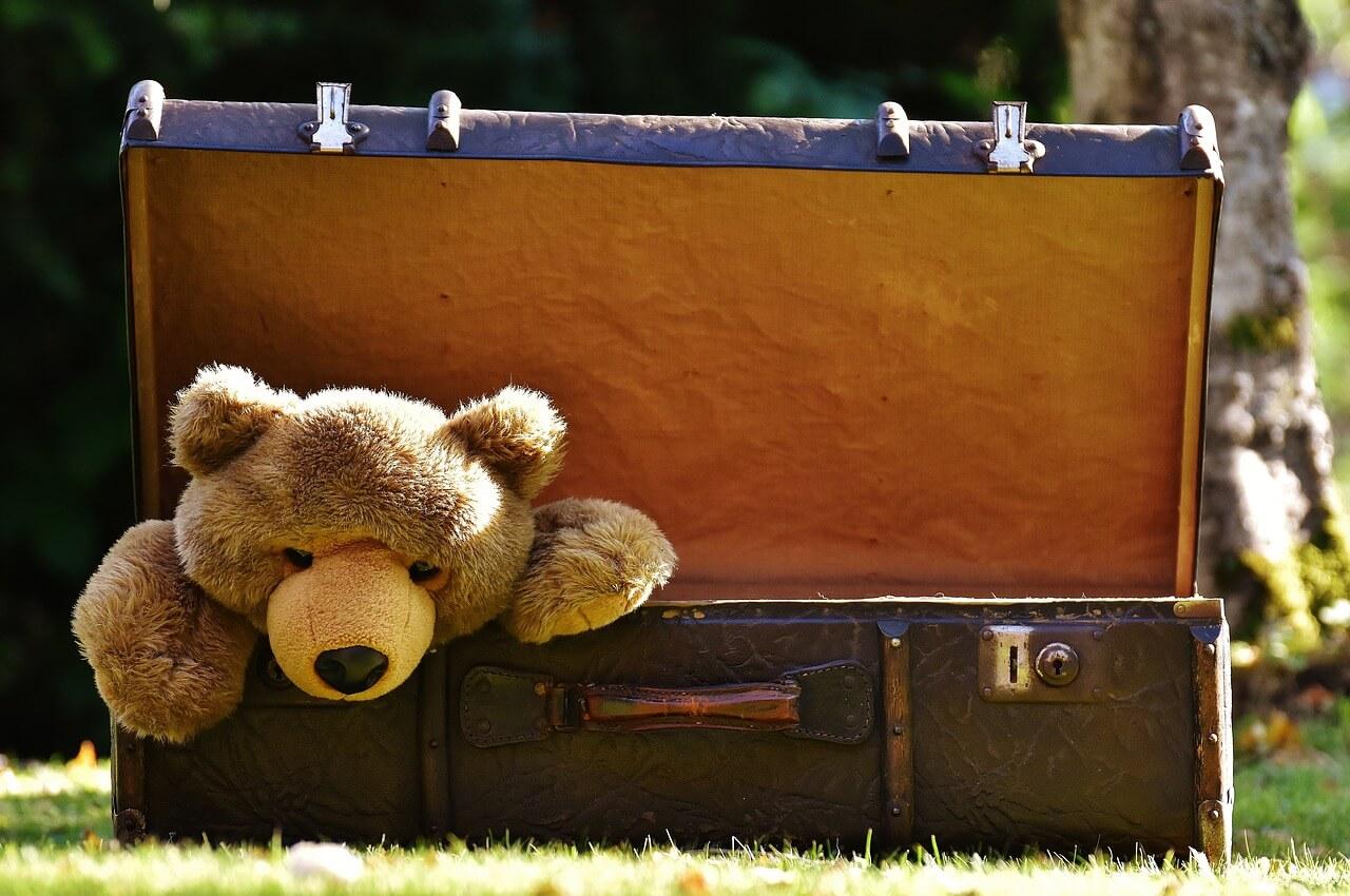 Ich packe meinen Koffer – wie Sie den richtigen Koffer finden