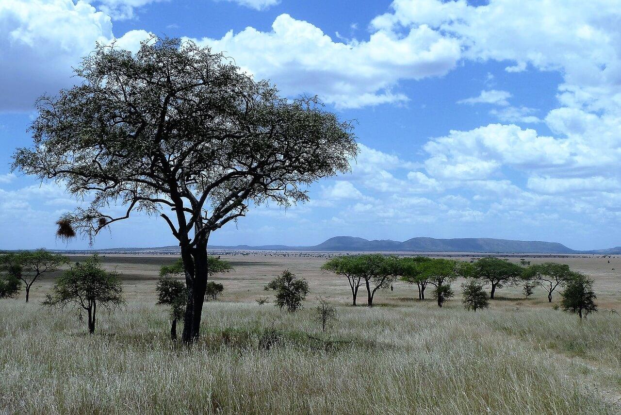 Top 10 Sehenswürdigkeiten in Tansania